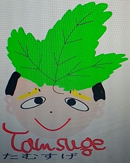 tatunootosigo